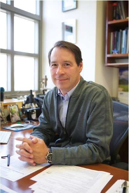 Photo of Peter Tontonoz, MD, PhD, sitting at his desk with a window in the background